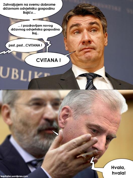 bajic_cvitan