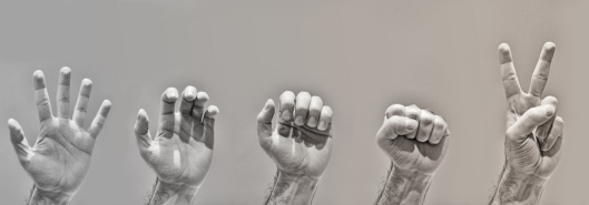 revolucija_ruke