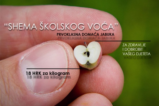 shema_skolskog_voca